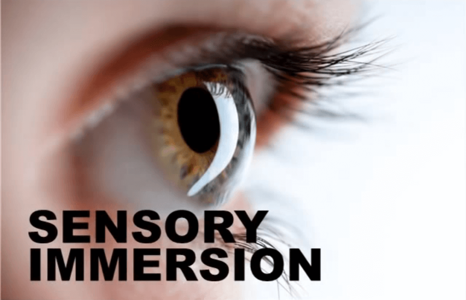 sensory-immersion